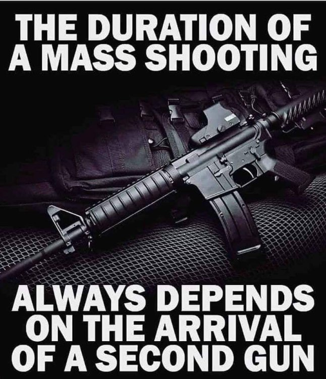 Gun Meme.jpg