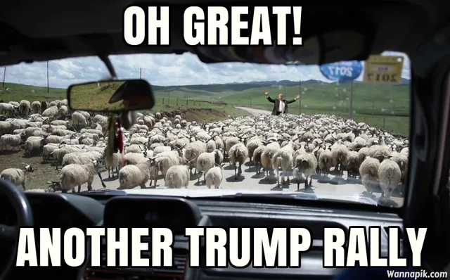 trump rally.png