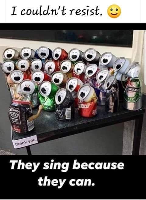 Cans sing.jpg