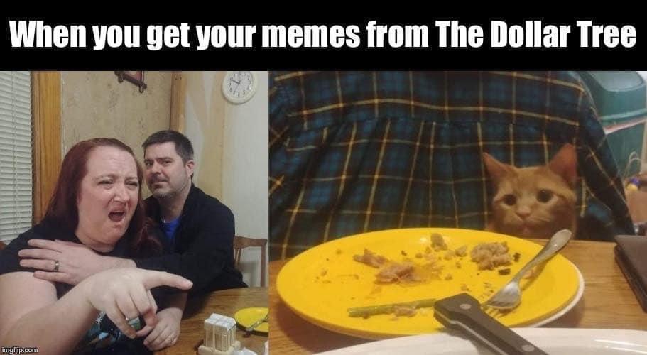 Dollar Tree Meme.jpg