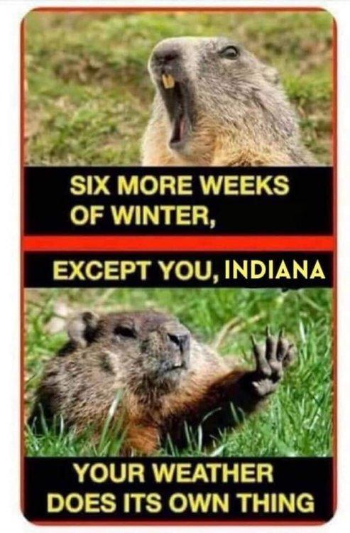 Indiana weather.jpg